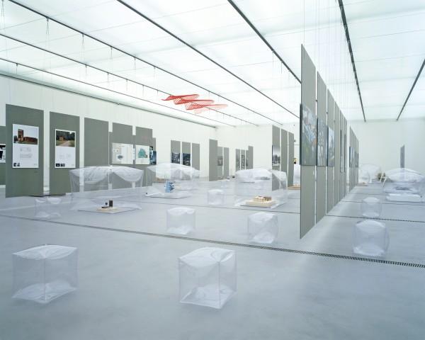 Dietmar_Tollerian_Linz_Installation